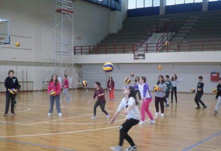 bolei1
